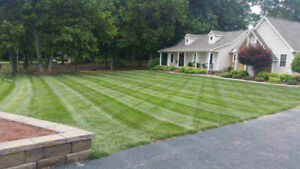 TOP QUALITY SOD AND LAWN MAINTENANCE!!!