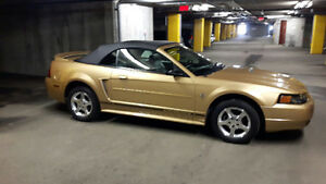 2000 Ford Mustang Cuir noir Convertible (2 portes)