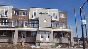 Fischer-Hallman and Huron Rd, Brand NEW Multi-level Condo