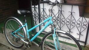 HYBRID bikes and CRUISER bike.