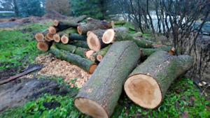 Bulk firewood cheap