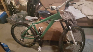Green custom Mt bike