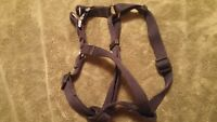 Adjustable dog harness for medium dog