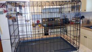 Cage en métal, plateau plastic fibre, à partir de $40