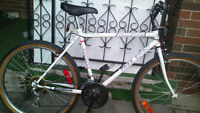 FREESPIRIT bike