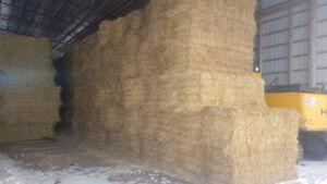 2018 3x3x8 Medium Square Wheat Straw Bales Pre-Order