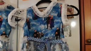 Dresses & Costumes associated with Frozen. Kawartha Lakes Peterborough Area image 2