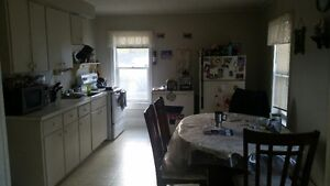 Next to Dixie Lee Large Bright 1 bedroom