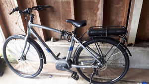 Raleigh Detour IE LG/20 Electric Bike