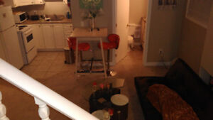 recently renovated downtown 1 bedroom apt