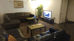 Bedroom + Private WR in Downtown Area
