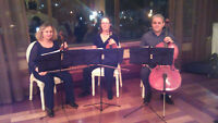 musicians for wedding ceremonies and receptions