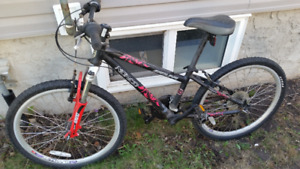 Norco youth's Mtn Bike