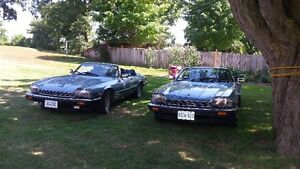 1989 Jaguar XJS His and Her Convertibles