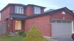 Newly Renovated Detached 3 Bedroom House in Burlington For Rent