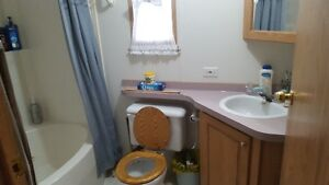 Motivated to sell-1998 Mobile Home with 3 lots in Grayson, SK Regina Regina Area image 7