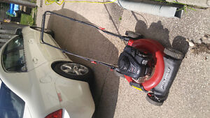 Murray lawn mower 2 years old