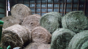 1st and 2nd Cut hay For Sale