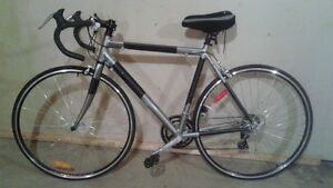 Raleigh Bicycle, Men's