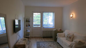 Fully renovated 1 bedroom apartment for rent CDN - Sept. 2017