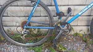 vélo adulte Gatineau Ottawa / Gatineau Area image 2