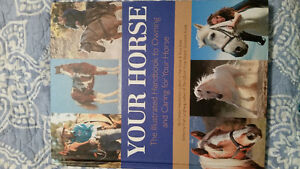 Stubben saddles, Australian saddle, pads, boots and books Cambridge Kitchener Area image 3