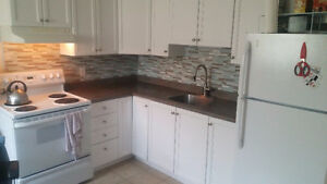 Beautiful 2 Bedroom in Central Location