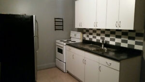 1 bedroom apt in well-maintained clean quiet building