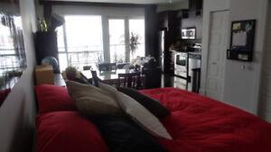 Superbe logement (loft) à louer dans le Faubourg Boisbriand