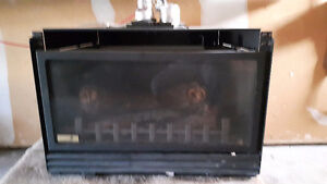 Napoleon natural gas fireplace insert
