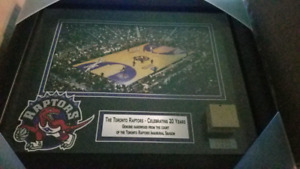 Frameworth Toronto Raptors Framed display