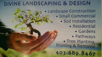 TREE PLANTING - TREE PRUNING - TREE REMOVAL - STUMP REMOVAL