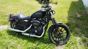 2013 Black Denim Sportster