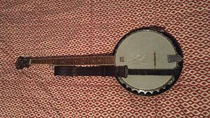 Washburn B-9 Banjo w/ Schatten Rosewood Pickup