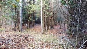 PRIME LOCATION! 47 ACRES ON SAUGEEN RIVER London Ontario image 7