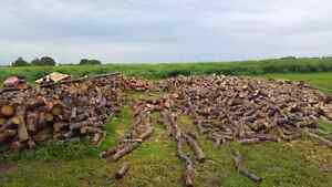 Fair priced dry split firewood for sale, many options!