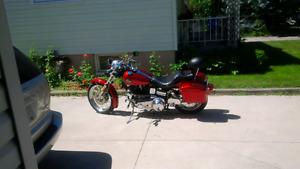 1981 Harley Davidson Softail