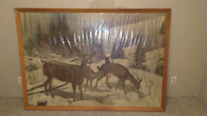 Vintage Sears framed wildlife posters