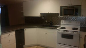 Basement Suite 2 Bdrm plus Den