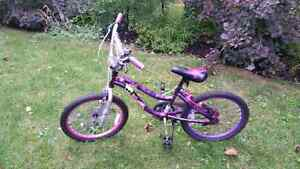 Monster High kids bike
