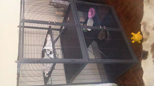 small-animal cage