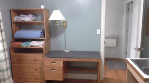 Student apartment walking distance to Mount on bus route to city