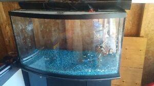 77 Gallon Fish Tank Gatineau Ottawa / Gatineau Area image 1