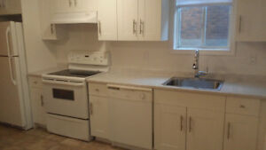 Bright LARGE 1 bedroom basement apartment NorthEnd St.Catharines