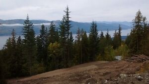 Exceptional Shuswap Lake View in Anglemont Estates