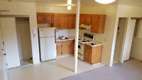 Quiet Bachelor in Great Area by the Rideau River