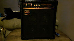 Rare ROLAND DAC15XD combo amp - made in Japan