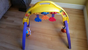 Newborn-to-Toddler Play Gym Kitchener / Waterloo Kitchener Area image 1