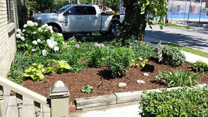 Lawn Care / Grass Cutting / Lawn Maintenance / Fall Clean Up London Ontario image 5