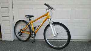 Small Frame Giant Mountain Bike